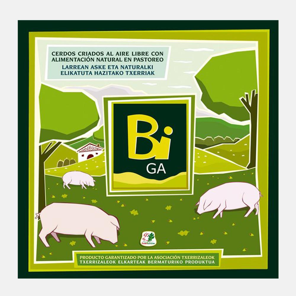 Imagen de marca Biga